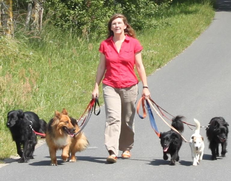 """Alessa Knoop-Lübke mit ihren """"Mitarbeitern"""" Lissy, Daria, Peppi, Ronja und Pixel"""
